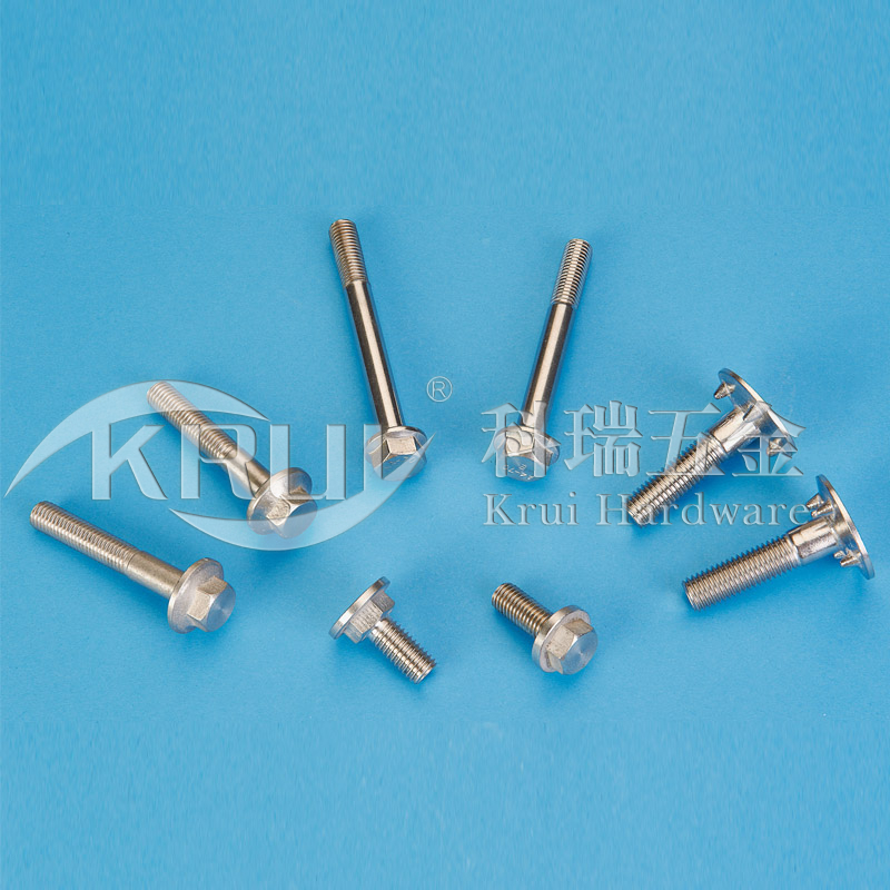The non-sign has custom-made--Stainless steel flange screw